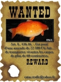 uncl_catac-wanted