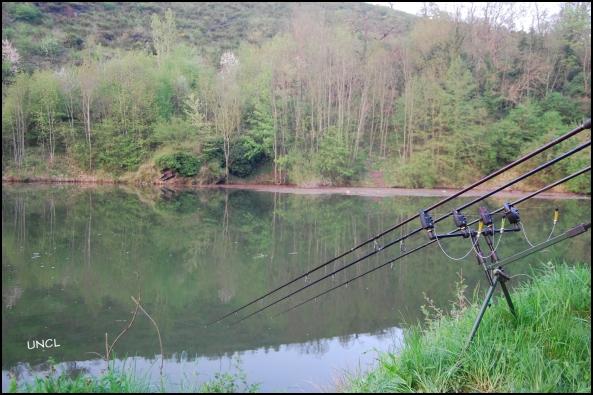 Pêche de la carpe dans le département de la Loire 42
